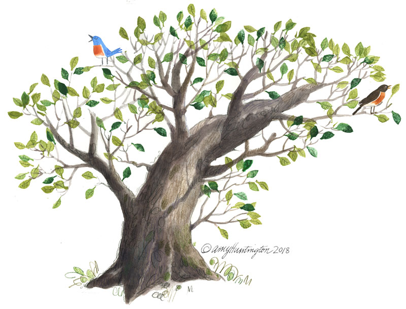 Illustration of a robin and bluebird in a tree