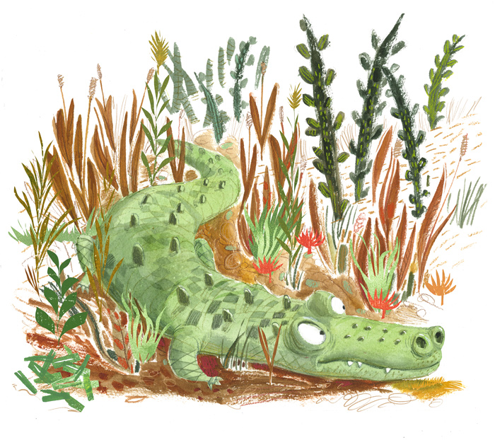 Illustration, alligator in the weeds