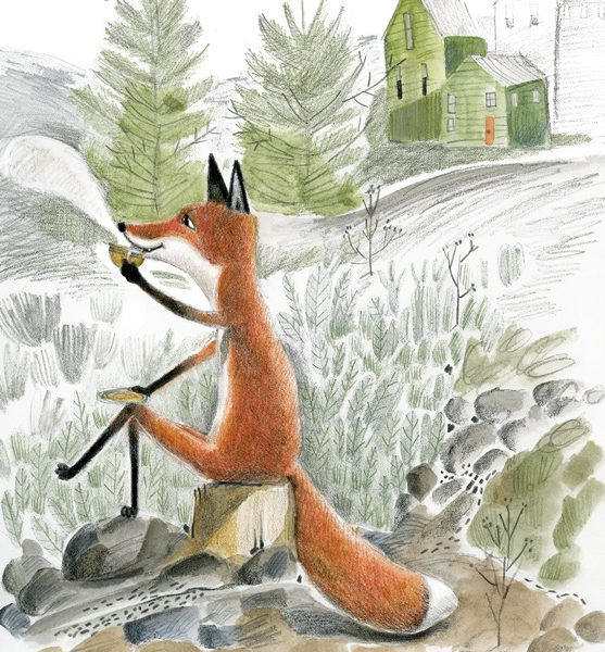 Illustration of a fox drinking tea