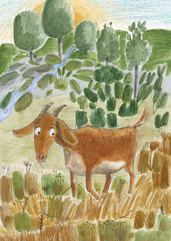 Illustration, goat in field